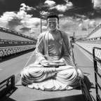 Great Buddha +